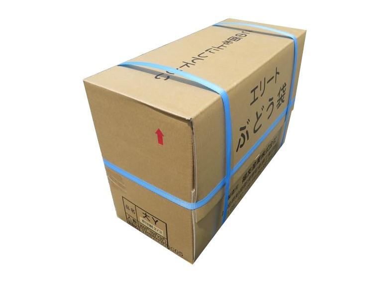 エリート 大2/3青  Y止付(緑ぶどう)205×295mm 3000枚/箱