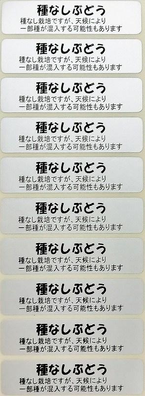 シール 種なしぶどう(注意書き 銀)57×14mm 長方形(10枚×50シート)
