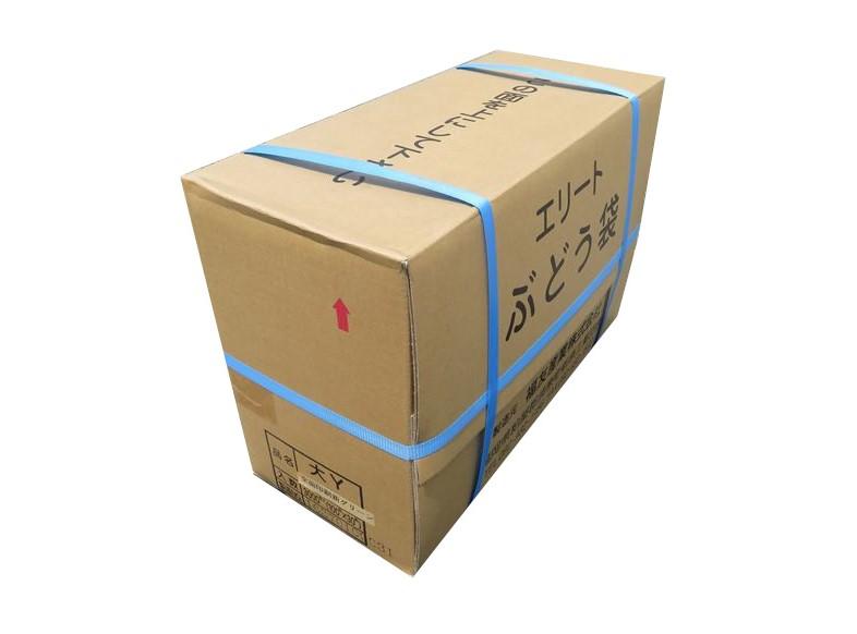 エリート 大新ク゛リーン Y止付(緑ぶどう)205×295mm 3000枚/箱