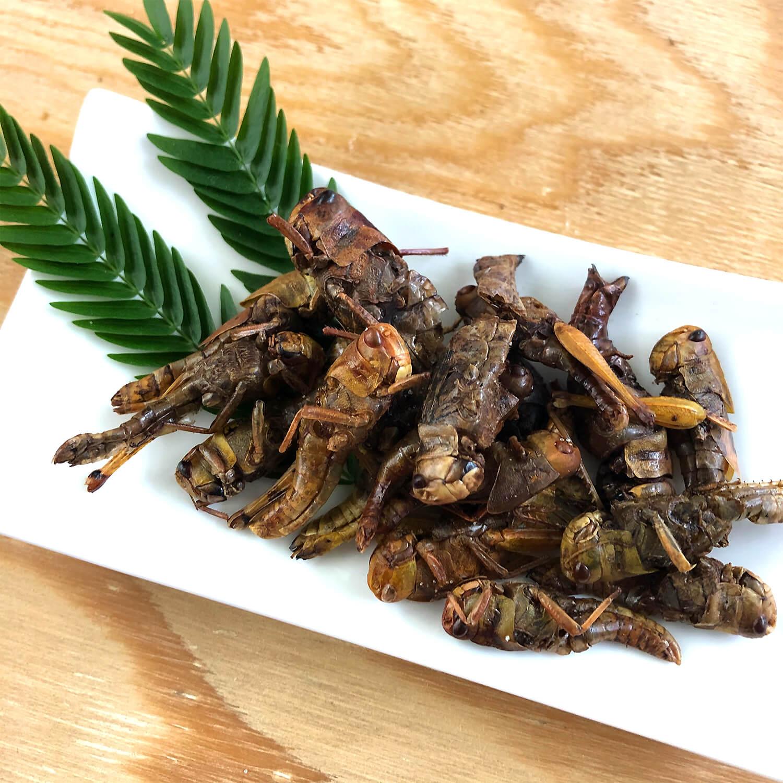 Locusts15g(ワタリバッタ15g)x 10袋