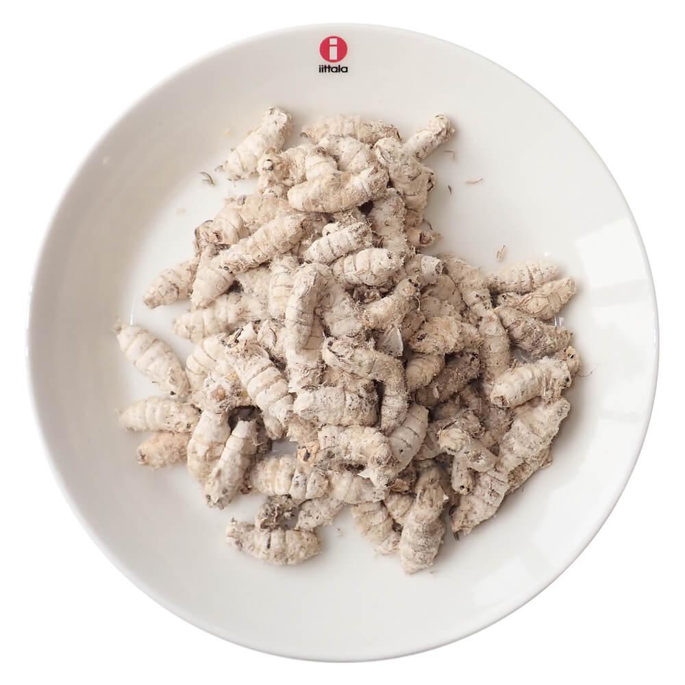 【国産】業務用サイズ 冷凍 カイコ 成虫(羽なし)(1kg)