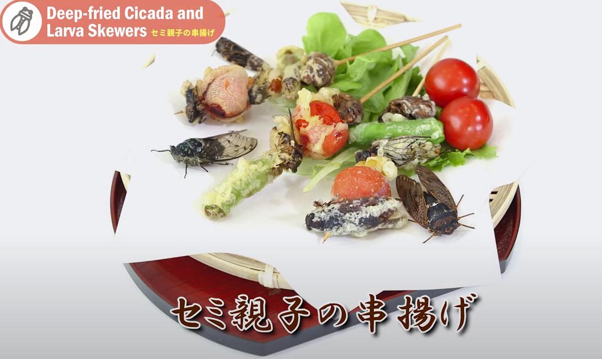 【国産】冷凍 アブラゼミ 成虫 10匹