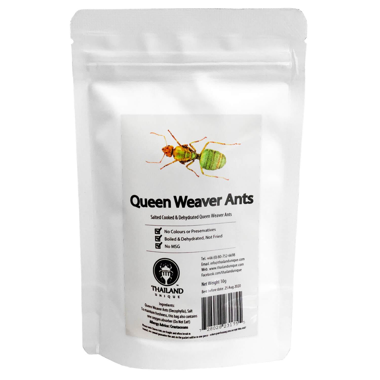 Queen Weaver Ants 10g (女王ツムギアリ10g)