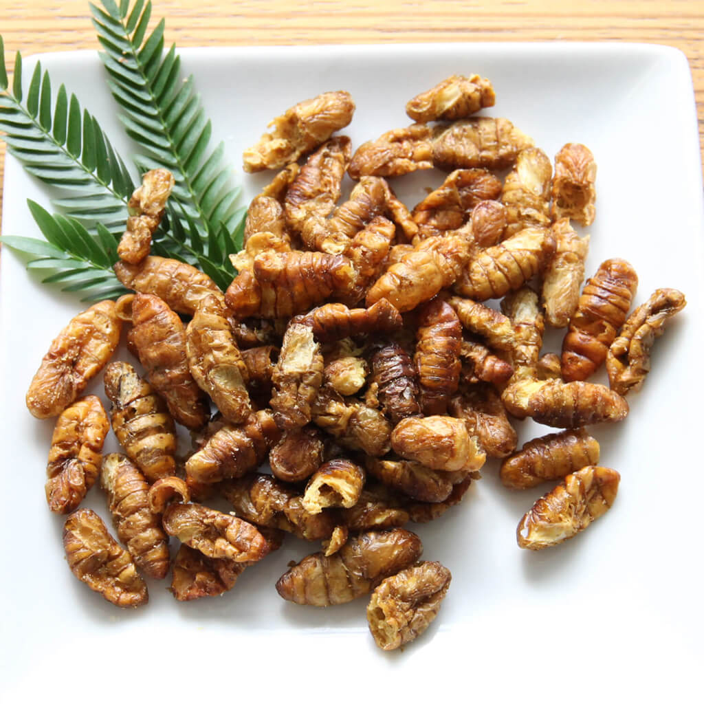 Silkworm Pupae15g(シルクワーム15g)