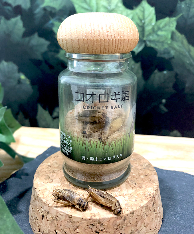 コオロギ塩50g 1ケース(12本入)