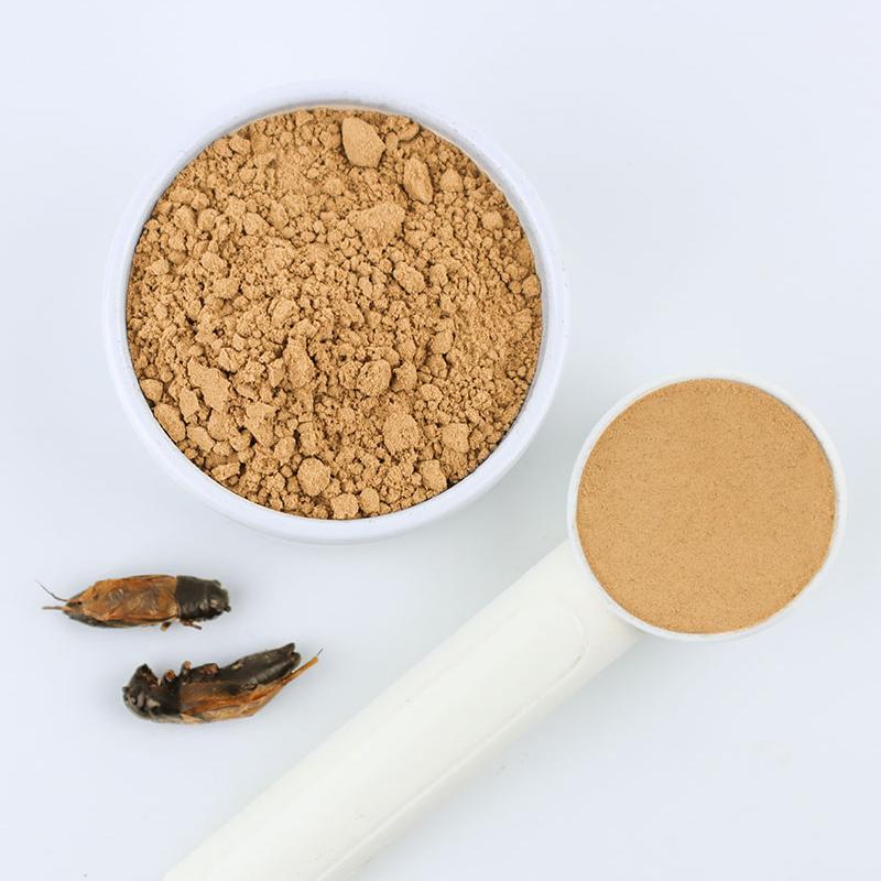 Cricket Powder 100g  (フタホシコオロギパウダー100g)  x  10袋
