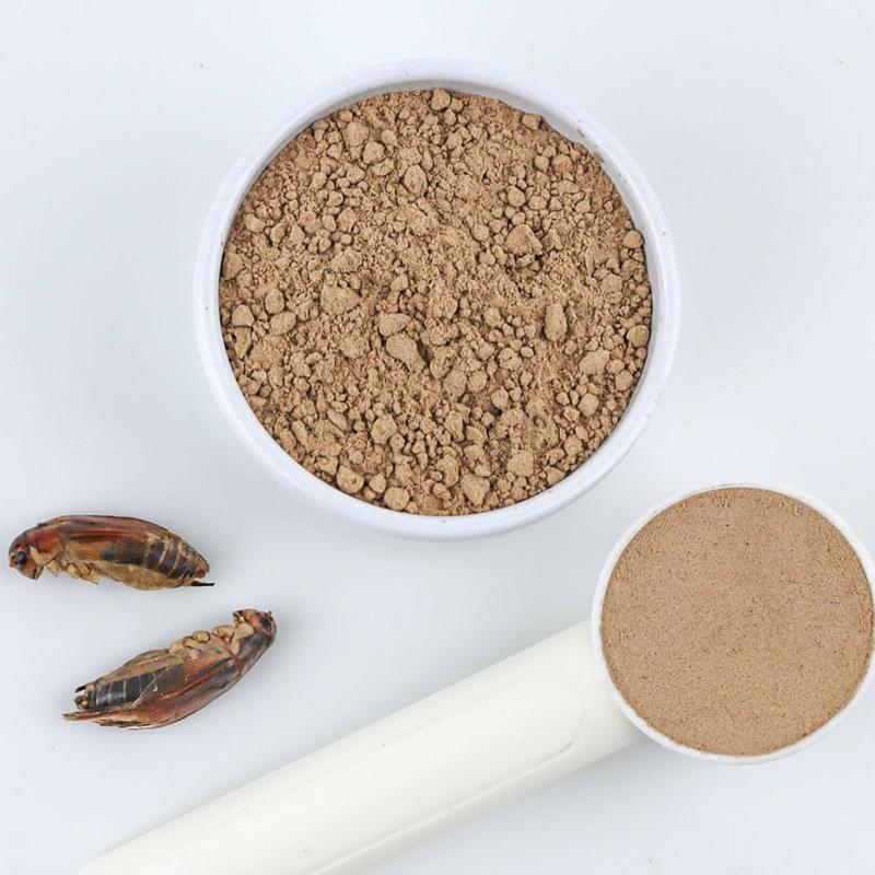 【パウダーサイズが選べる】Cricket Powder 100g (ジャマイカンコオロギパウダー100g)