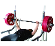 BULL Bench & Squat Racks IPF公認