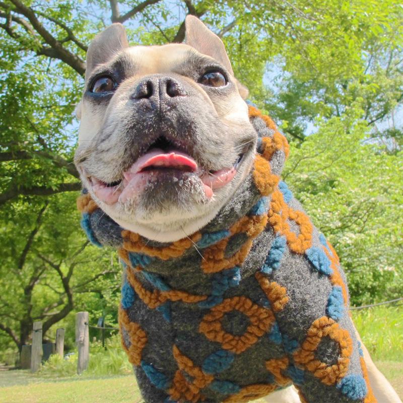 飛び出るお花みたいな圧縮セーター【メール便不可】