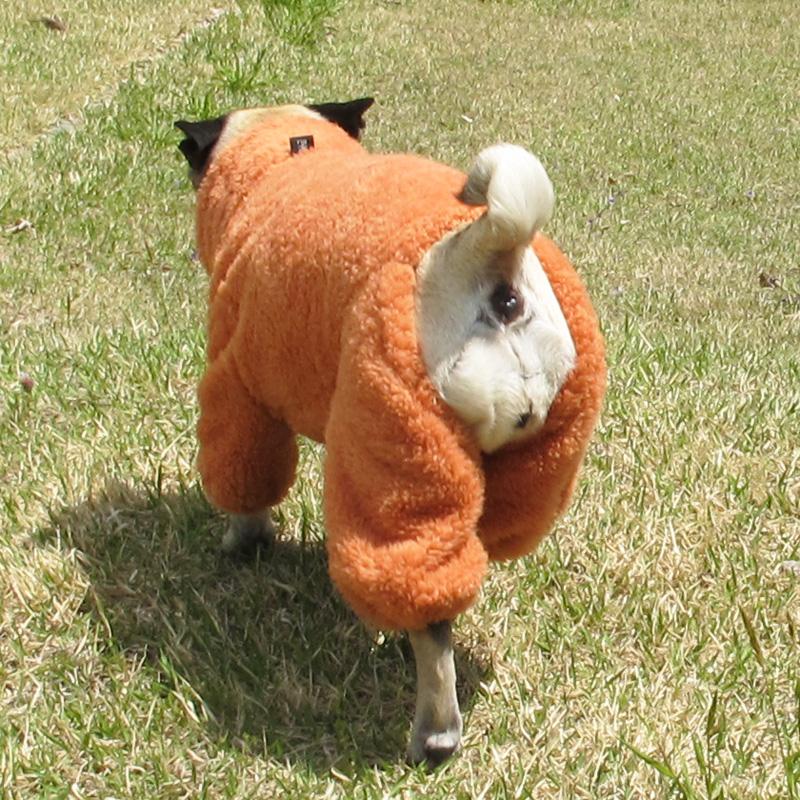 着る毛布つなぎ(アプリコット)【メール便不可】