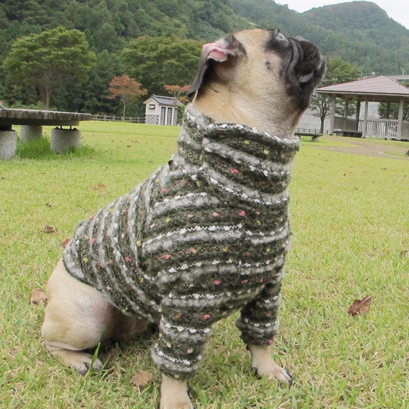 ボーダーと玉セーター(抹茶)【一着のみメール便可】