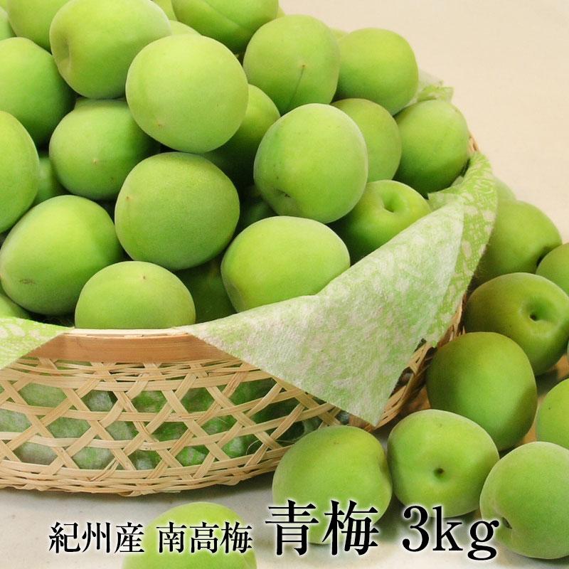 青梅(和歌山県産)南高梅の青梅3kg<br>朝採り新鮮【2019年ご予約開始】<br>完熟梅もございます。