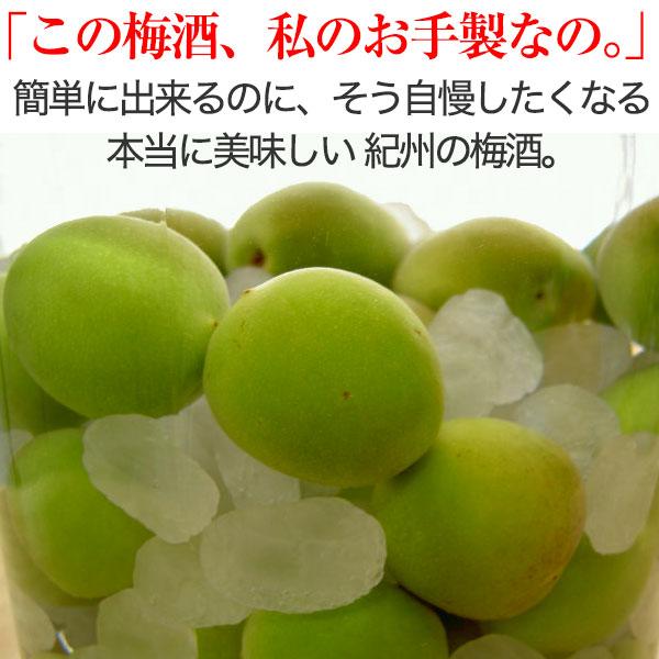 梅酒、梅ジュース作り用青梅。<br>朝採り新鮮!南高梅の青梅 5kg<br><br>【2019年予約受付中】<br> 簡単梅レシピ&おまけ付♪<br>梅干し、梅ジャム作りに最適な<br>完熟梅もございます。