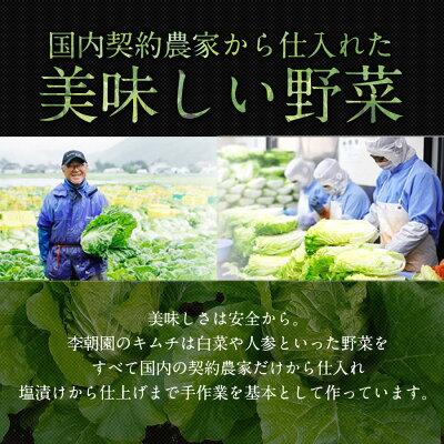 贅沢キムチ食べ比べセット(5種類の野菜キムチ) 李朝園&ふみこ農園 共同開発! 梅、山芋、レンコン、大根、白菜キムチ クール便送料無料