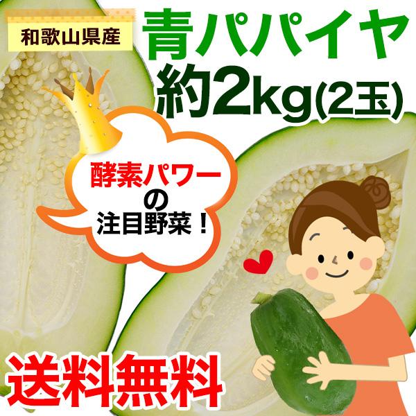 和歌山県産 青パパイヤ 約2kg(2〜4玉)<br><br>【送料無料】※一部地域除く<br><br>パパイン酵素たっぷり!効能たっぷり!<br>ソムタムやサラダ、きんぴら、野菜炒め、フライに煮物、カレーにも!<br><br>※販売期間:10月下旬〜11月下旬