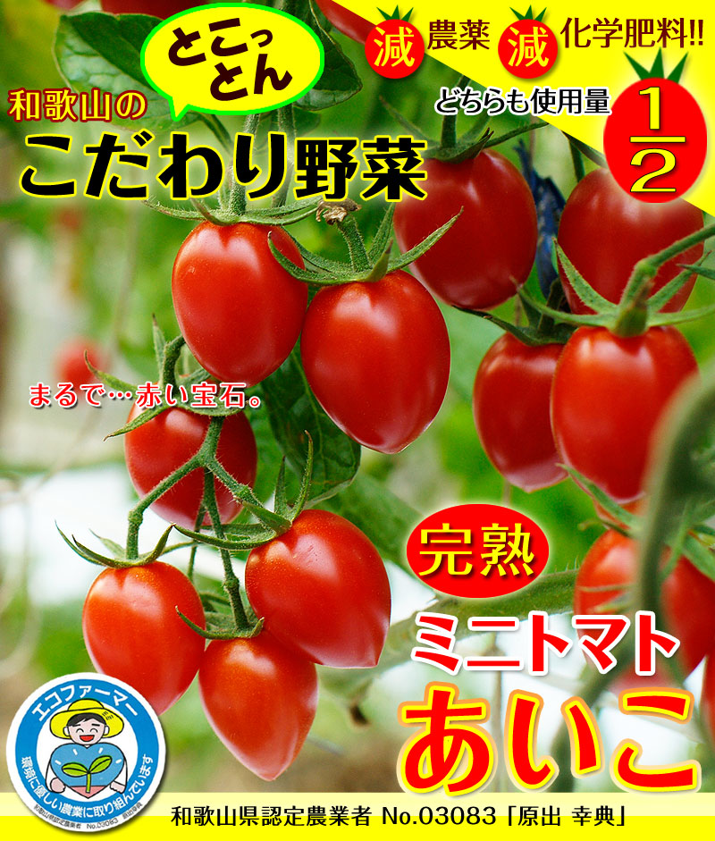 ミニトマトあいこ(アイコ)2kg【送料無料】<BR><br>和歌山のエコファーマーが減農薬・減化学肥料で作るこだわりの果肉・栄養たっぷりの美味しいトマト(ロケットトマト)
