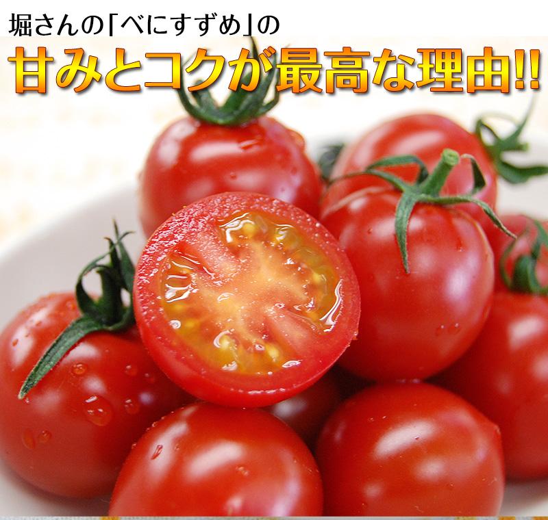 ミニトマト キャロルセブン 2kg<br>【送料無料 ※北海道、沖縄を除く】<BR><BR>減農薬・減化学肥料で栽培する、驚きの糖度と絶妙のコク、濃厚な風味が余韻を引く美味しいトマト