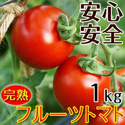 フルーツトマト1kg(送料無料) 匠の里紀州 假家英明が育てる 減農薬・減化学肥料栽培、土作りにこだわった安心安全なトマト 驚きの糖度とコクが余韻を引く美味しさ