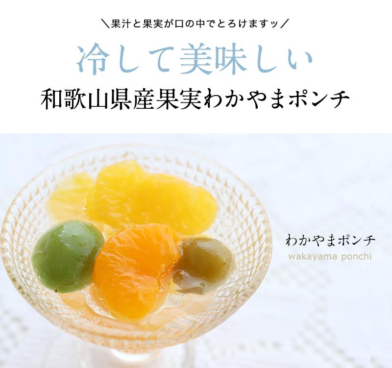 食品 送料無料 食べ物 健康 グルメ 80代 果物 スイーツ <br><br>わかやまポンチ6個入 <br>日本ギフト大賞受賞!和歌山県認定フルーツゼリー<br>スイーツ ゼリー