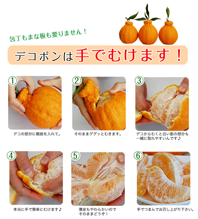 ハウス栽培の完熟デコポン「甘デコ」 <BR>和歌山県産【送料無料】<BR>葉付き手軽な2Lサイズ12玉入(約3kg)<BR><BR>種なし!房ごと食べられる!甘いコクのある不知火(しらぬい)ハウス栽培ならでは美味しさ!独自の有機肥料、除草剤なしで作り上げるこだわり柑橘