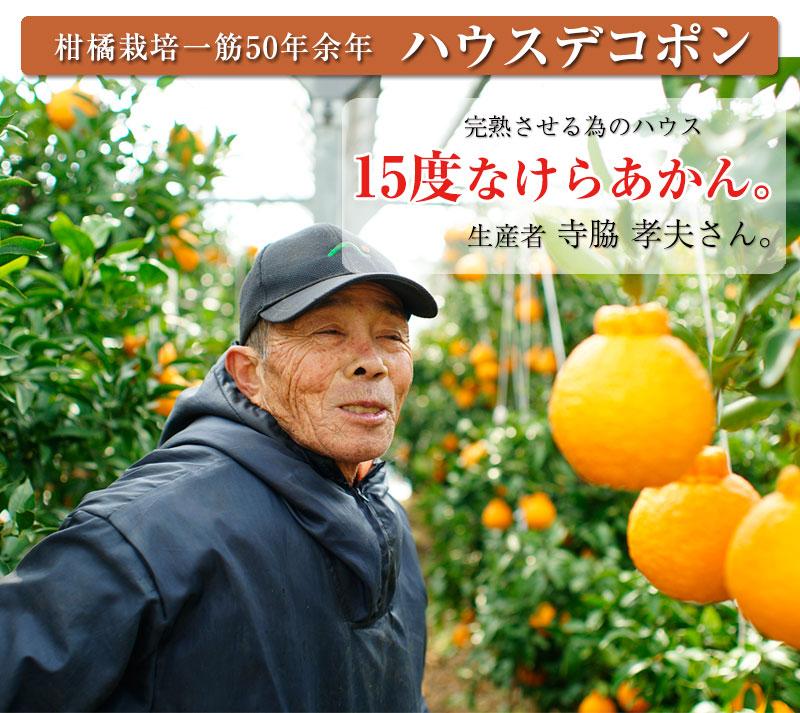 ハウス栽培の完熟デコポン「甘デコ」 <BR>和歌山県産【送料無料】<BR>葉付き手軽な2Lサイズ12玉入(約3kg)<BR><BR>種なし!房ごと食べられる!甘いコクのある不知火(しらぬい)ハウス栽培ならでは美味しさ!独自の有機肥料、除草剤なしで作り上げるこだ