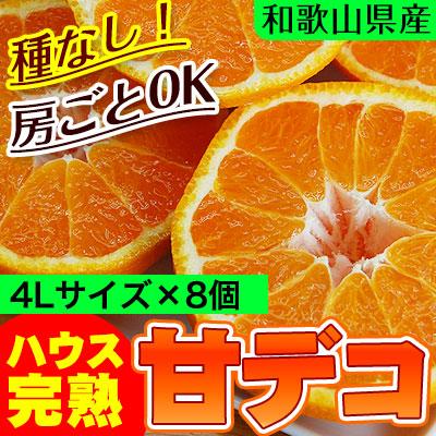 ハウス栽培の完熟デコポン「甘デコ」 <BR>和歌山県産【送料無料】<BR>葉付き立派な4Lサイズ8玉入(約3kg)<BR><BR>種なし!房ごと食べられる!甘いコクのある不知火(しらぬい)ハウス栽培ならでは美味しさ!独自の有機肥料、除草剤なしで作り上げるこだわり柑橘