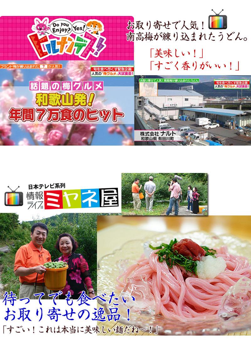 梅うどん 2食スープ付(温)<br>日本テレビ「ヒルナンデス!」で旬グルメでも美味しい!と紹介された和歌山ならではのうどんを通販で。<br><br>梅うどん/ヒルナンデス!/日本テレビ/グルメ/通販/うどん/麺/和歌山/梅干し/メディア/香り/通販/ナルト<br>
