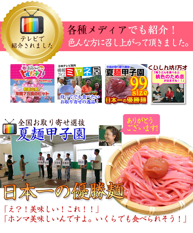 紀州 梅うどん(4食スープ付・麺400g)<BR>南高梅の梅肉を麺に練り込んだ、ふわり…梅風味のおなかにやさしいうどんです。<br><br>和歌山 メディア テレビ 掲載 ミヤネ屋で紹介 日本一の優勝麺 うめ ウメ かけうどん