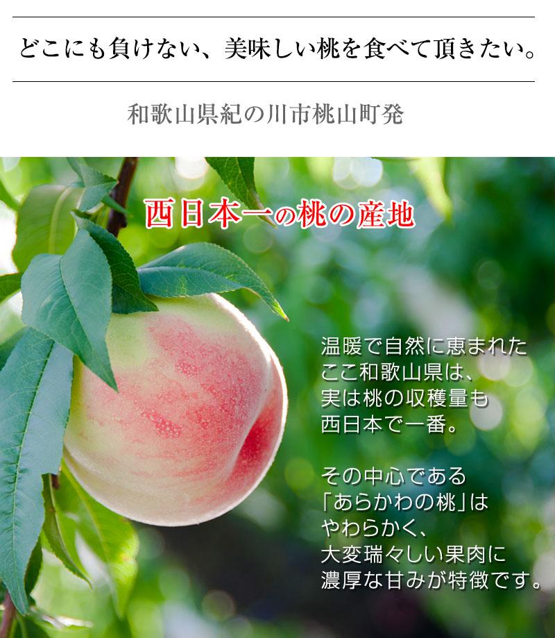 2021年ご予約開始 和歌山県産あら川の桃 6玉入(約2kg)<br>4Lサイズの特秀品!<br>減農薬栽培のエコファーマー認定農家がつくる土、安心安全、味覚にこだわるみずみずしく濃厚な甘みの美味しい桃を産地直送!