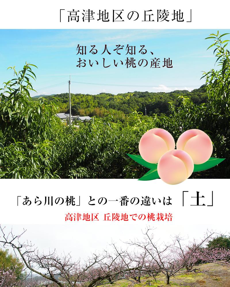 和歌山県産高津の桃(白鳳)<br>約4kg 2L〜3L 12〜13玉<br>光センサー選別の美味しい桃!<br>【送料無料】※北海道、沖縄を除く。<br>※7月上旬〜中旬頃の順次発送。