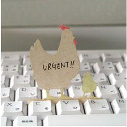 """パソコンのキーボードのキーのすき間に挟んで立てかけられるかわいい伝言メモ ハイモジモジ Deng On""""Chicken"""""""