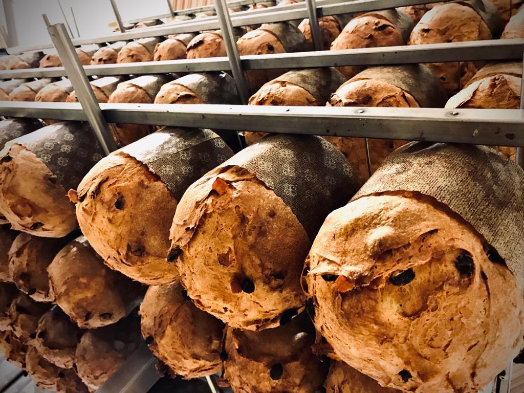パネットーネ 1kg<br>イタリアで5本の指に入るパネットーネ。ドライフルーツが沢山入ってしっとりと美味しいです。