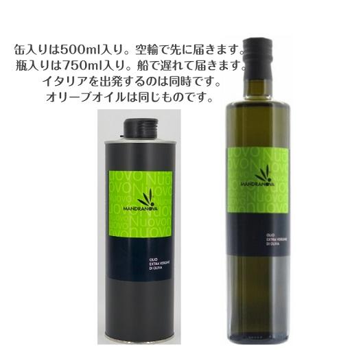 【ご予約受付中】マンドラノーバ 2020年ヌォーボー 750ml (瓶)