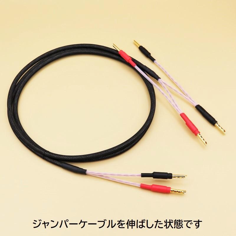 スピーカーケーブル(ジャンパーケーブル一体型) WTS-SP5600