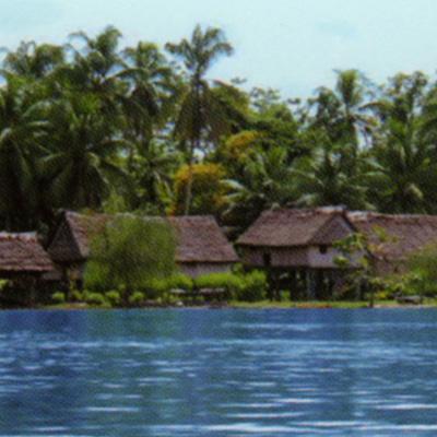 パプアニューギニア カカオ 71%