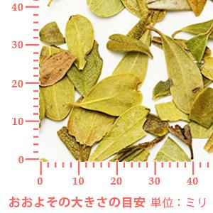 ウワウルシ 100g 【ポストお届け可】