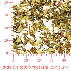 スベリヒユ 100g 【ポストお届け可】