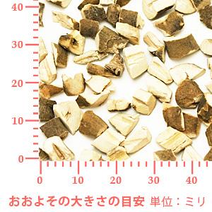 ボタンピ 100g 【ポストお届け可】