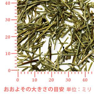 スギナ(ホーステール)野生種 10g 【ポストお届け可】