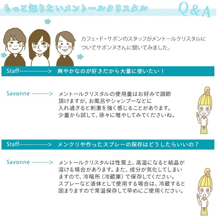 メントールクリスタル(ハッカ脳) 100g 【ポストお届け可】