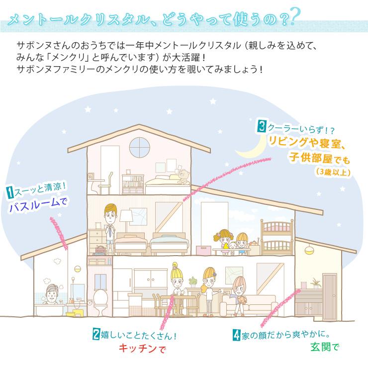 メントールクリスタル(ハッカ脳) 20g 【ポストお届け可】