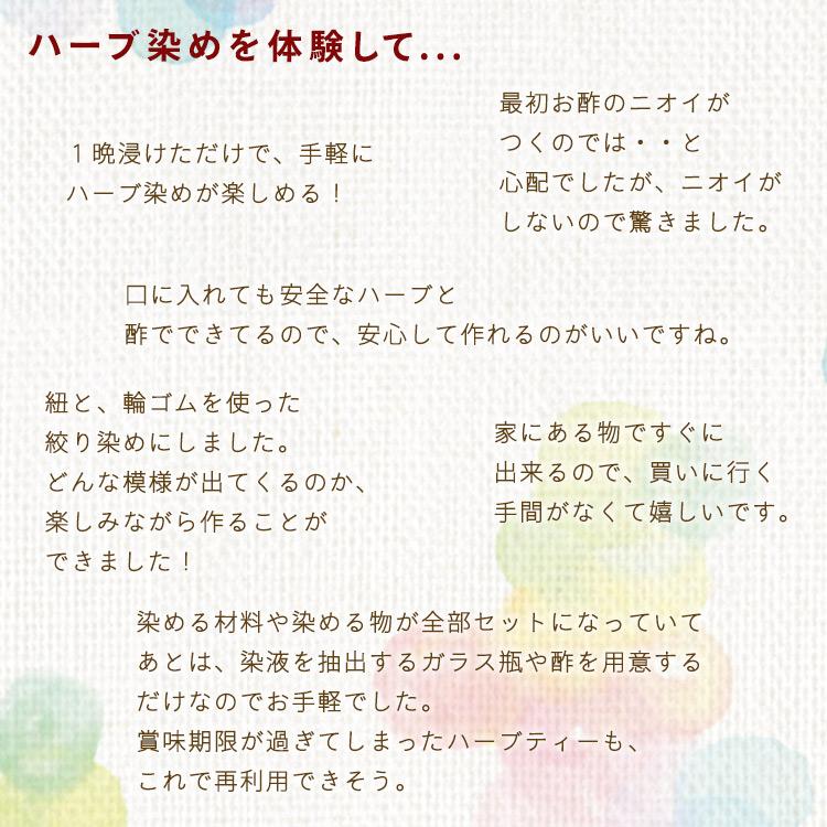 【ネコポス送料無料】 ハーブ染めキット