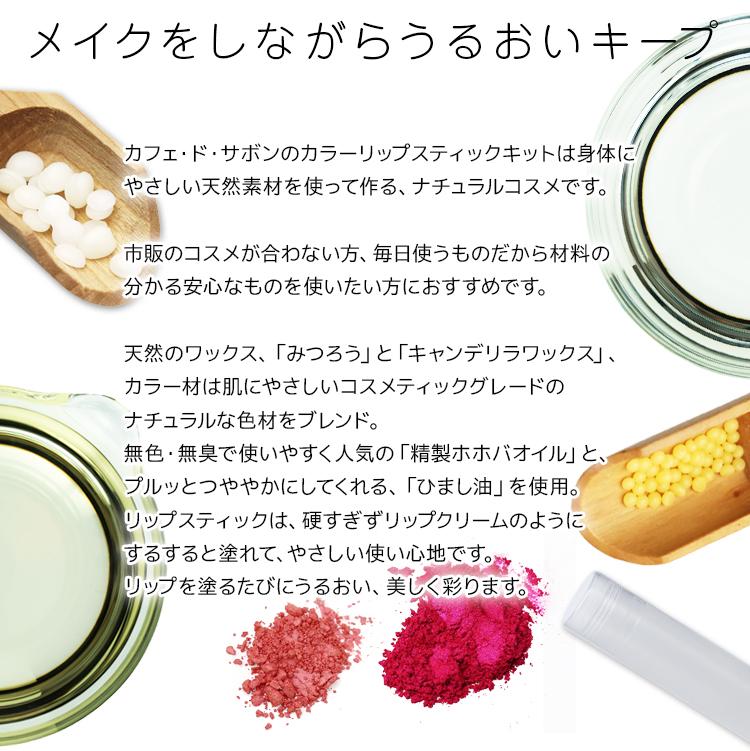 【ネコポス送料無料】カラーリップスティックキット レッド