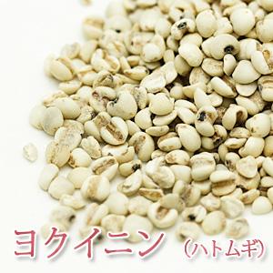 ヨクイニン(ハトムギ) 50g 【ポストお届け可】