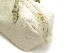 ロデム ブロンズゼブラ<ホワイト> 金具:ゴールド