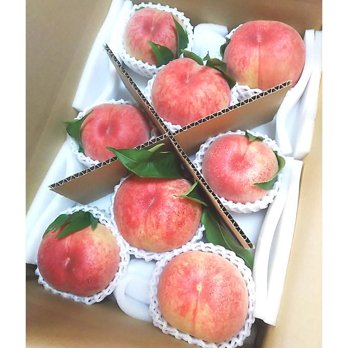 小林果樹園の樹上完熟桃(日川白鳳8〜10玉)《送料込》