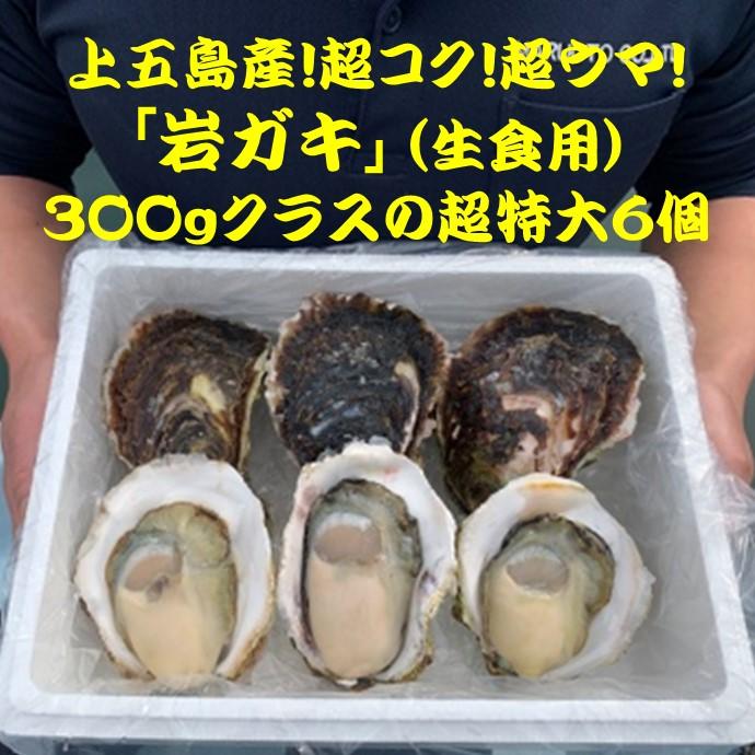 今が旬!上五島の岩ガキ・超特大6個(送料込)