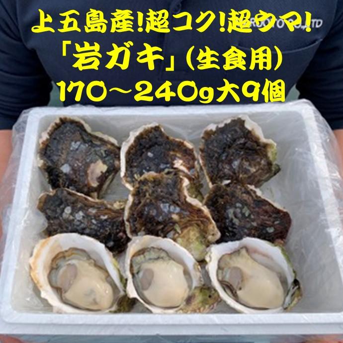 今が旬!上五島の岩ガキ・大9個(送料込)