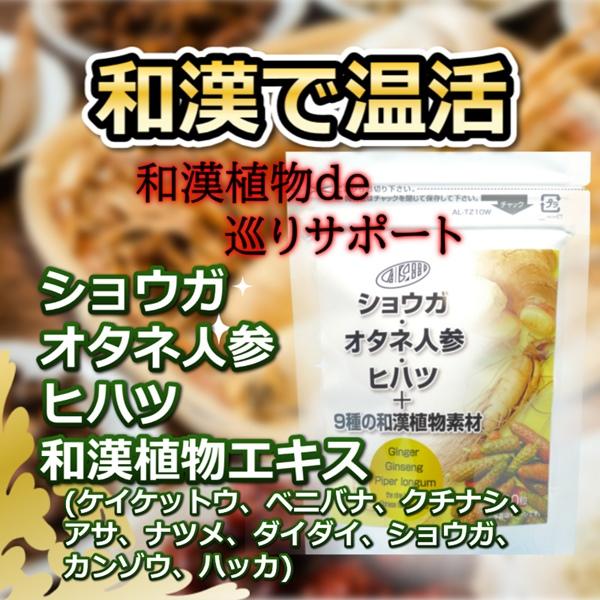ショウガ・オタネ人参・ヒハツ+和漢植物素材9種