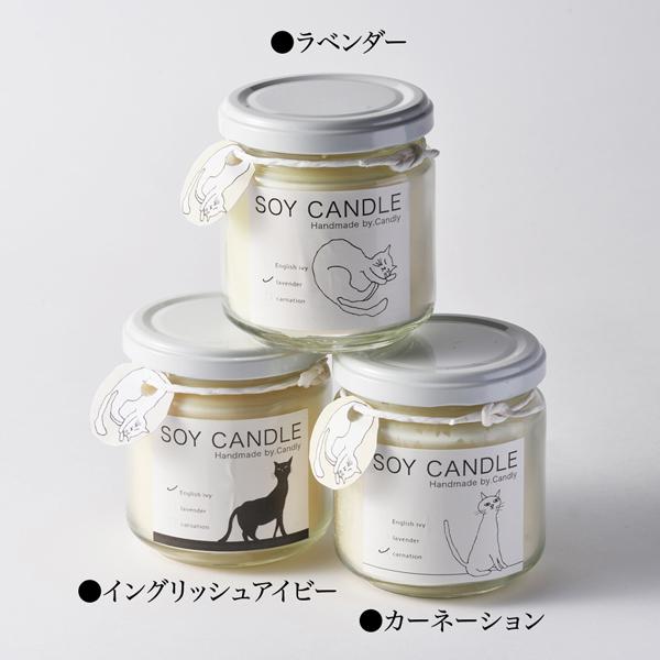 SOY CANDEL(瓶)